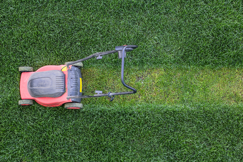Does Your Mowing Technique Make the Cut? How to Properly Mow Your Lawn