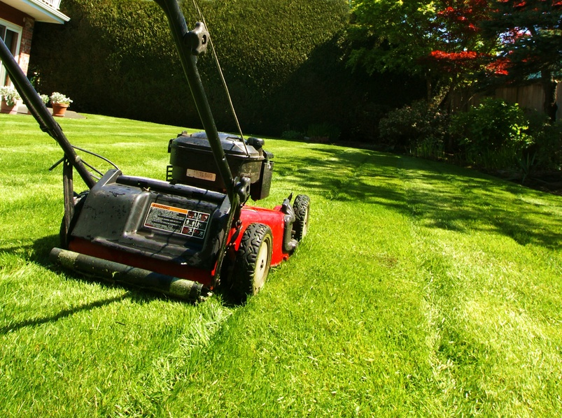 The Lawn Care Service Didn't Make the Cut: What You Need to Do It Yourself
